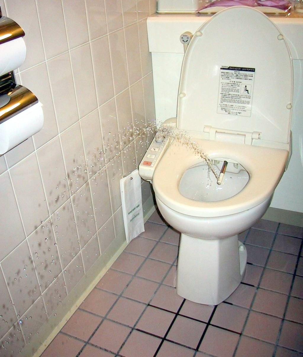 как выбраться из японского туалета это самая